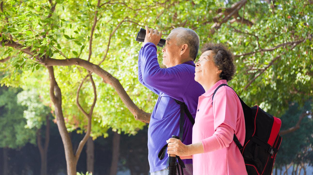 bảo hiểm hưu trí, bảo hiểm người già, bảo hiểm nhân thọ, bảo hiểm tiết kiệm, an hưng lộc phát